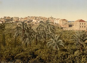 20-Ottoman Palestine (1890-1900) From the garden, Jaffa, Holy Land.resized.jpg